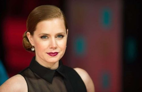 NIGHTBITCH:  Amy Adams en vedette de l'adaptation produite par Annapurna Pictures