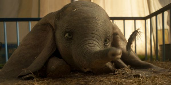 «Dumbo»:  saltimbanques contre show-business