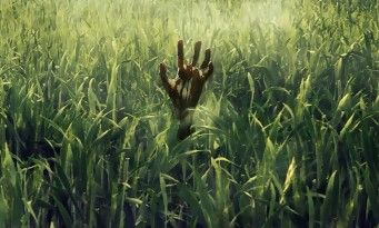 In The Tall Grass:  Stephen King et son fils Joe Hill adaptés par Vincenzo Natali